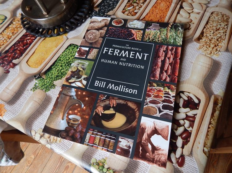 ferment-mollison