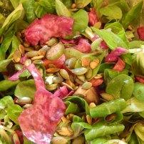 cavolo viola insalata
